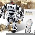 Remote Control RC Robot Toy Humanoid Infrared Robot / RoboSapien